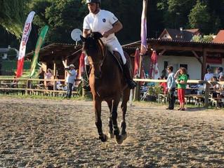 Hervorragender 3. Platz für CAVOFIT Reiter Reinhold Maier beim CSN-B* in Tillmitsch (Stmk.)