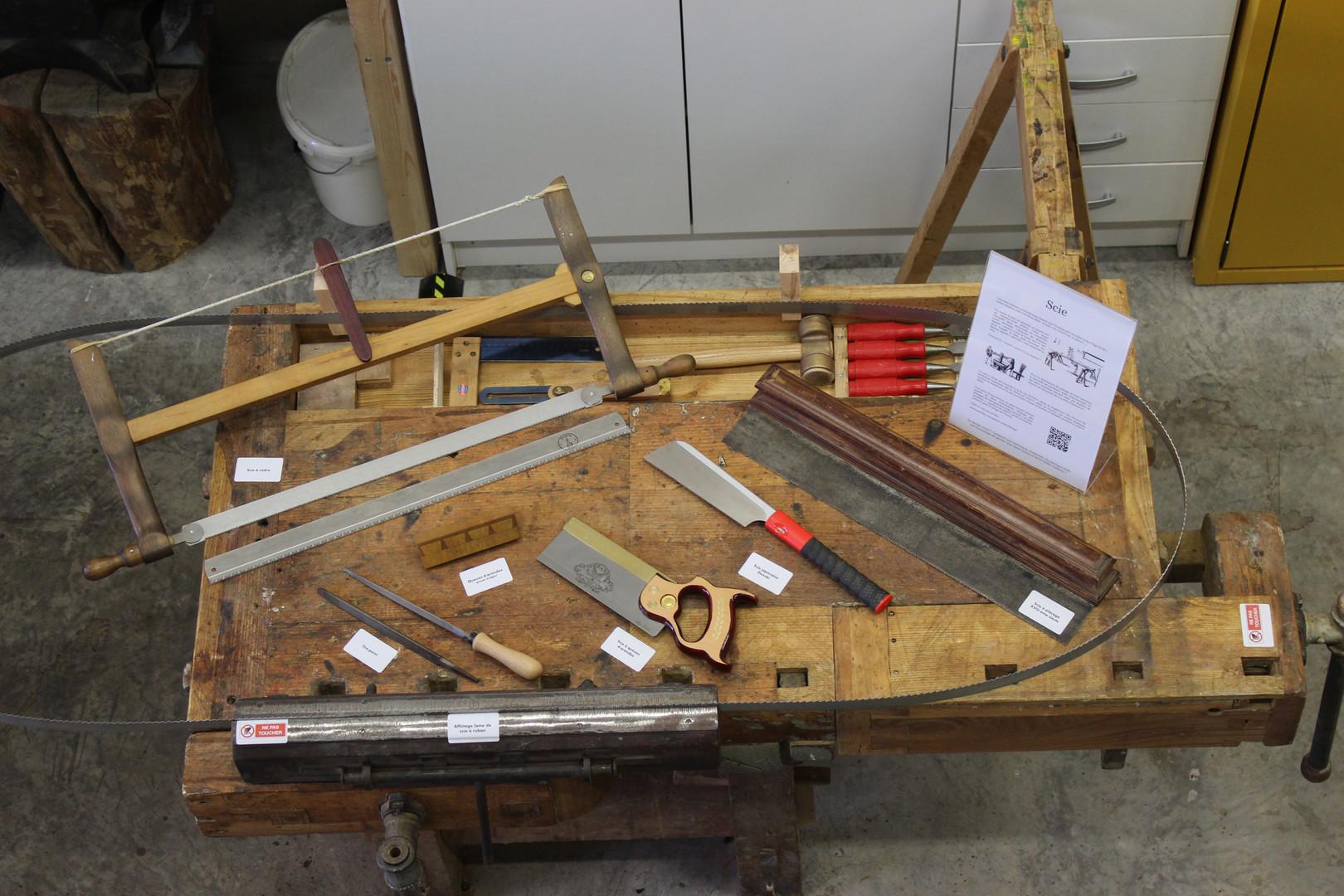 Workshop - saws
