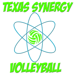 Texas Synergy Logo .png
