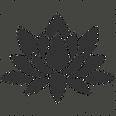 lotus-512.png