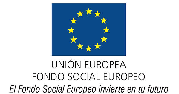 Logo_FSE_4.jpg copia.jpg