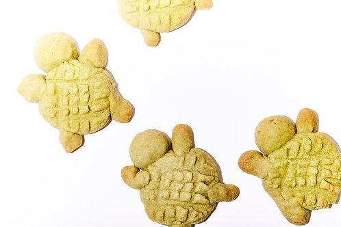 Matcha Turtles