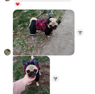 Screenshot_20201204-163249_Instagram.jpg