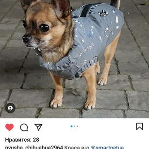 Screenshot_20201216-103108_Instagram.jpg