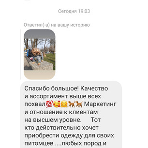 Screenshot_20210411-191138_Instagram.jpg