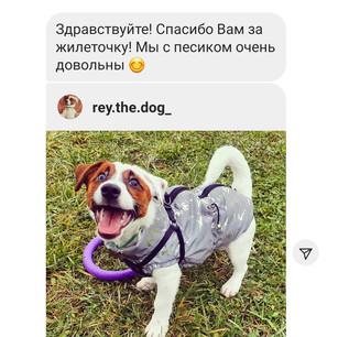 Screenshot_20201129-132929_Instagram.jpg