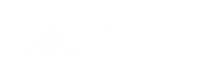 WIS-Logo-White-FINRA.png