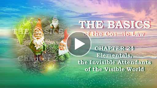 The Basics of the Cosmic Law: Elemental Life