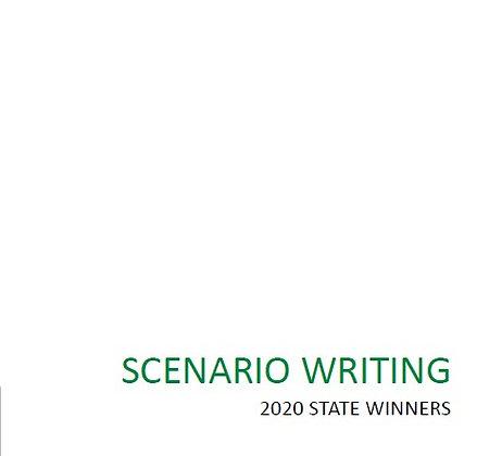 2020 Scenario Winning Stories