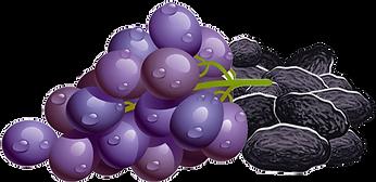 grapes-img.webp