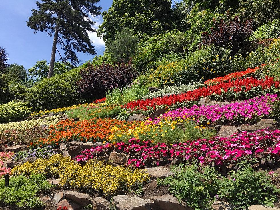 Colourful gardens 1.JPG
