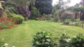 Your garden.JPG
