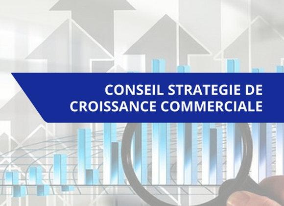 Prestation de conseil stratégie de croissance commerciale
