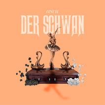 Onur Musiker - Der Schwan Cover