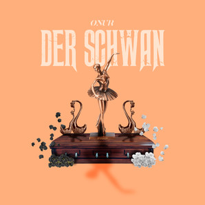 """""""Der Schwan"""""""