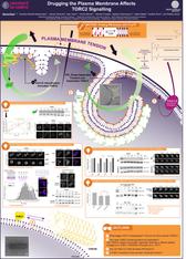 Example of scientific poster