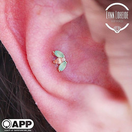 Fresh conch with a picture perfect marquise fan from _bvla #appmember #safepiercing #bodyv