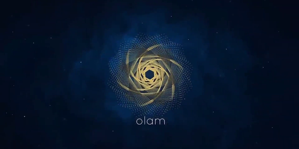 Atelier week-end en ligne avec OLAM