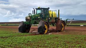 AGRO   Eficiência na Aplicação
