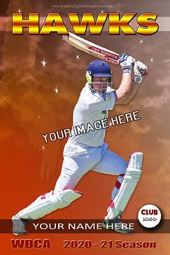 Hawks Template Cricket.jpg