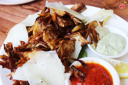 Fried artichoke with shaved manchego, baby greens, two sauces