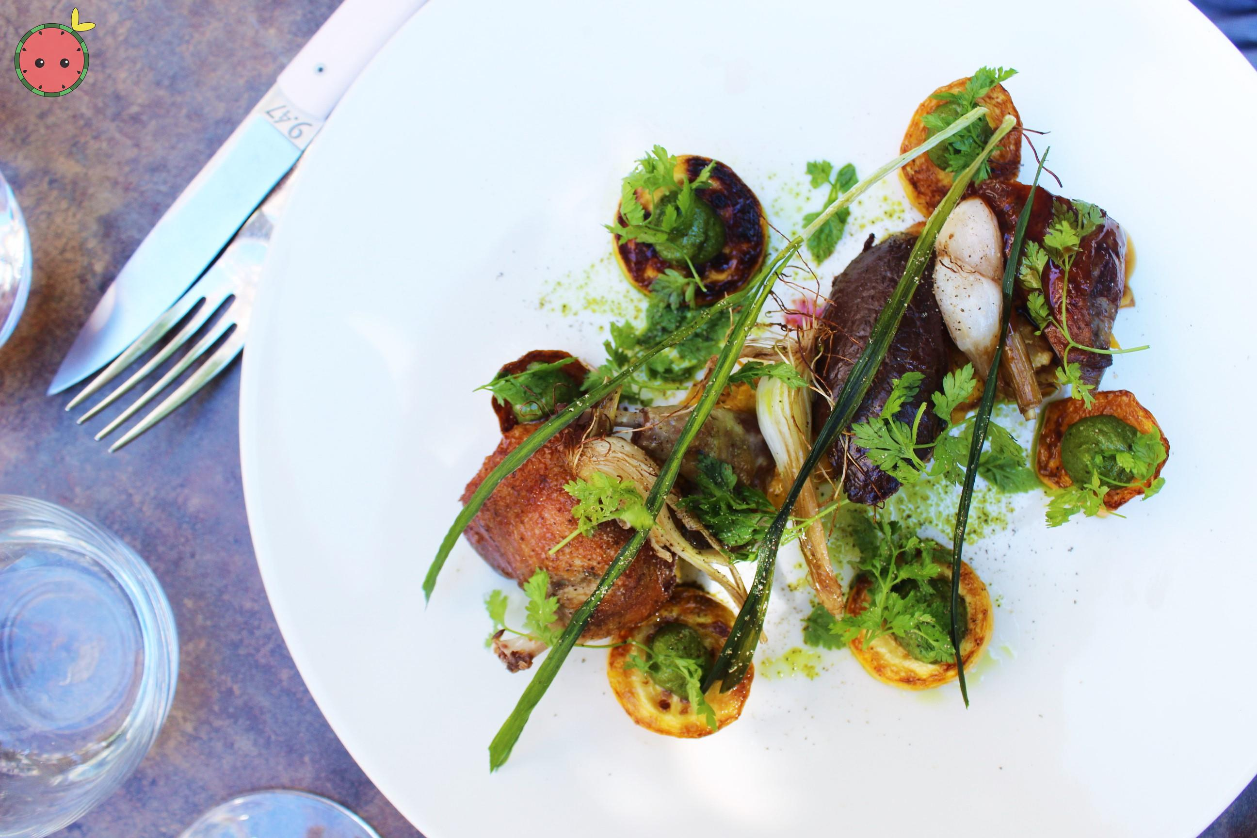 Pornic Pigeon with his rotie, zuccuini, onions, and pesto