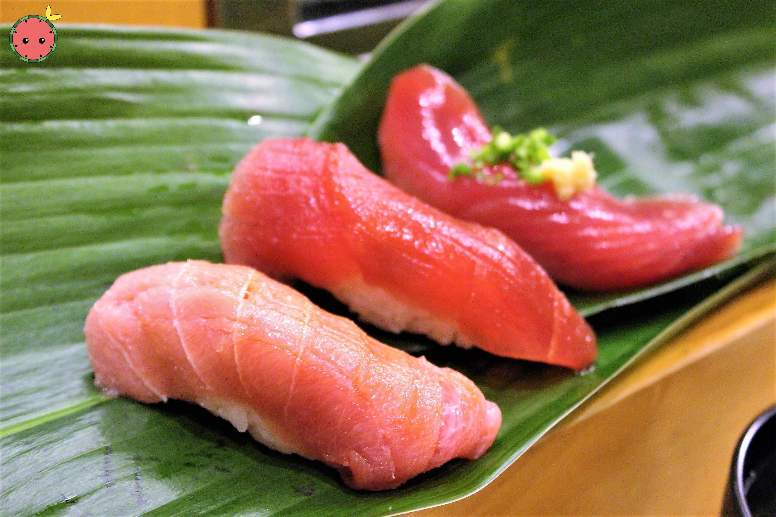 Chutoro, Maguro, Bonito Fish