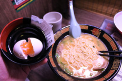 Soft Boiled Egg & Tonkatsu Ramen