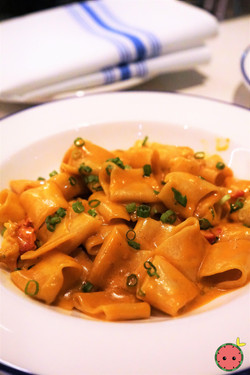 Paccheri with Lobster, Green Onion, & Tomato