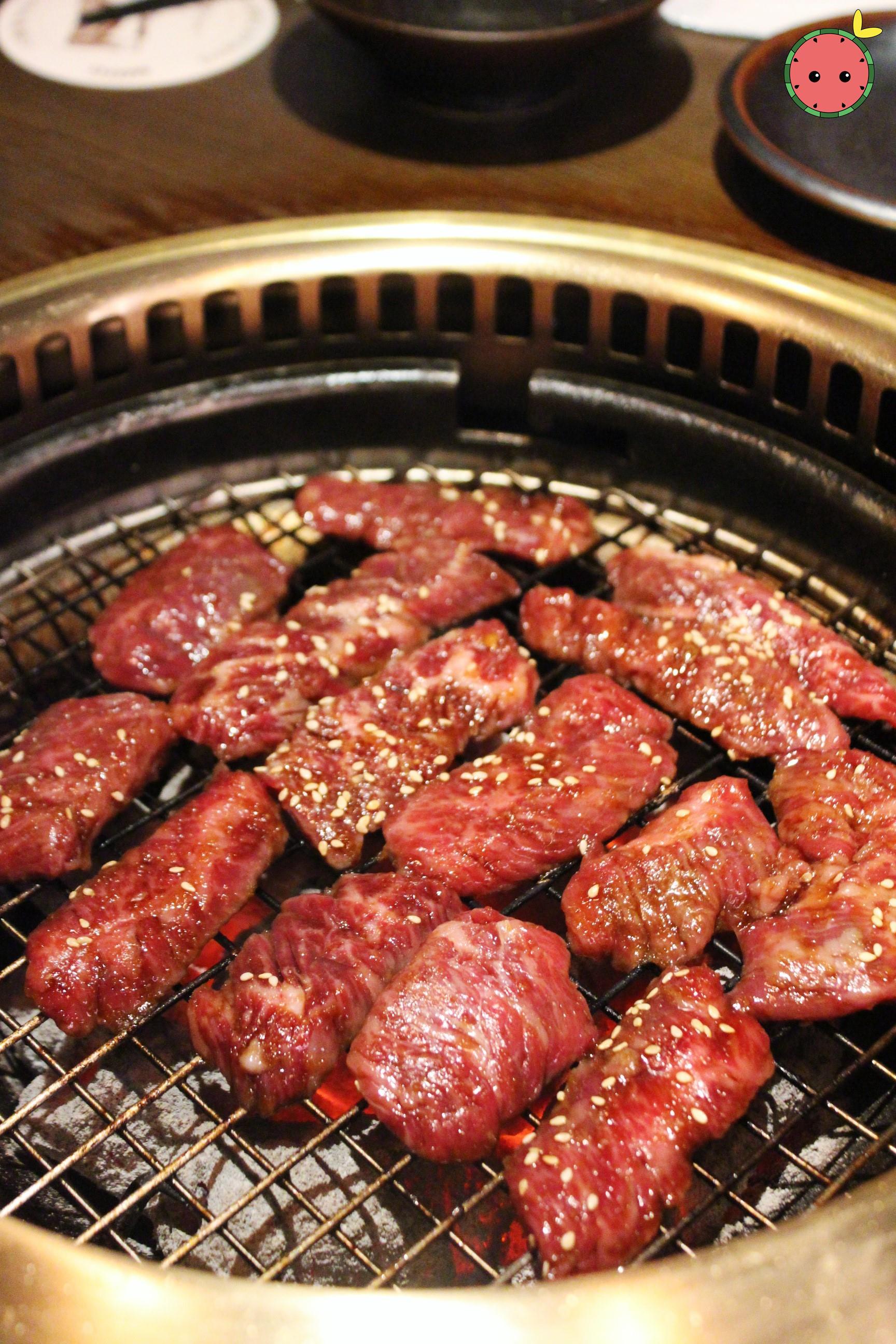 Marinated Beef (3)