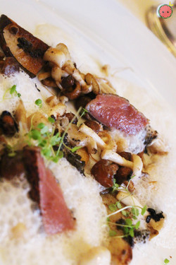 Forager's Treasure of Wild Mushrooms - Sweet garlic, special spices, grilled toro black truffle dres