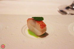 Butter poached lobster claw, lemon gelée & green spring pea purée