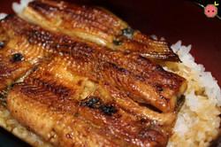 Unagi Don - Grilled Eel Rice Bowl 3