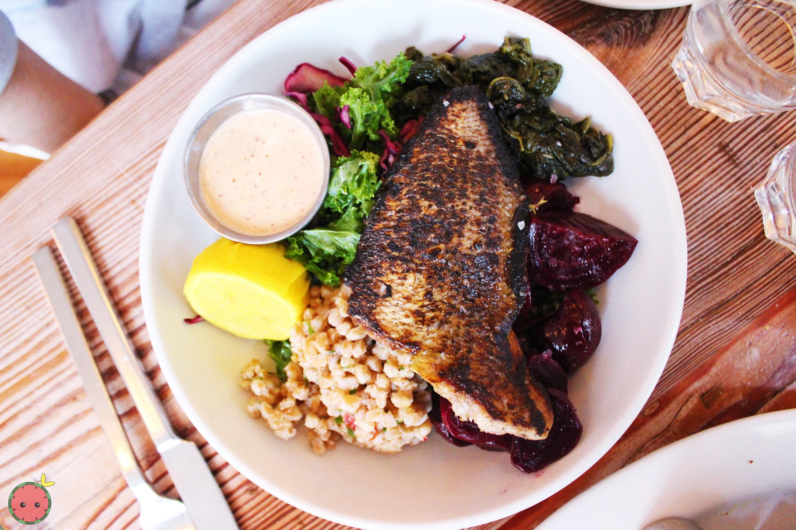 Porgy with harissa cashew sauce with three sides (sautéed spinach with garlic, farro with olives & c