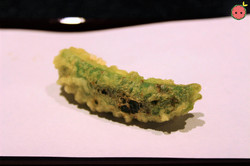 Snap Peas Croquette