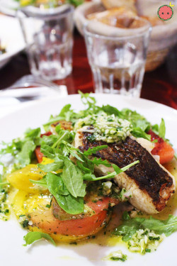 Merluza with Assorted Grilled Tomatoes, Arugula, and Cucumber