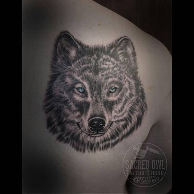 Tattooed this wolf on Luke last week.jpg