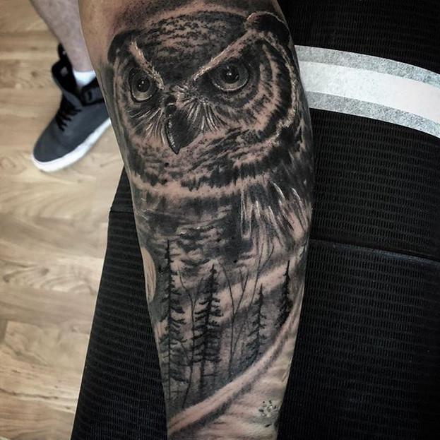Still shot of Ashten's owl piece.jpg