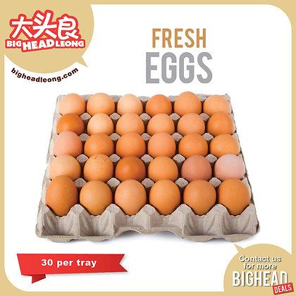 Fresh Eggs 30s