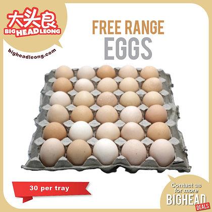 Free Range Eggs 30s