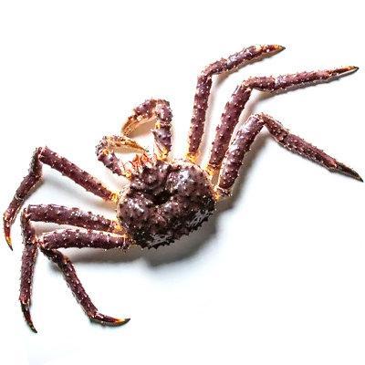 Alaskan King Crab (USA)/2.5kg/ 1nos