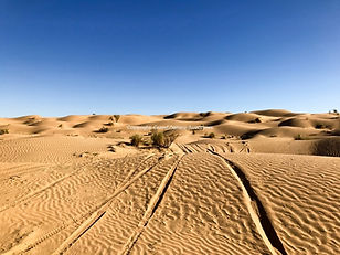 Circuit 4X4 dans le désert Tunisien