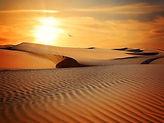 Excursion dans le désert et réveillon du jour de l'an. Tunisie.jpg
