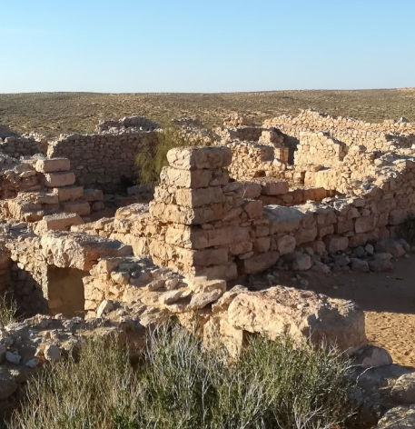 Le Fort Romain de Tisavar à Ksar Ghilane Tunisie