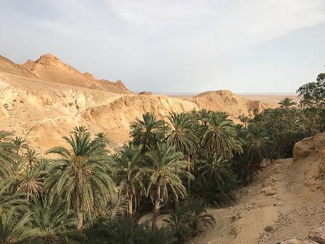 Circuit de Gabes à Tozeur et les oasis de montagne. Tunisie