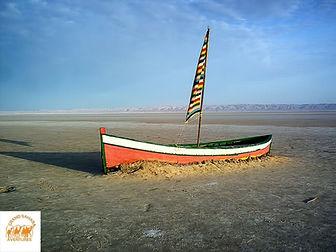 Le Chott el Jerid. Tunisie