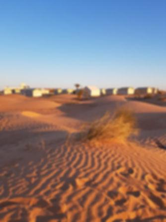 Excursion dans le désert tunisien avec Grand-Sahara-Aventures, Tunisie.jpg