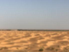 L'oasis de Ksar Ghilane. Tunisie.jpg
