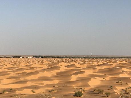 L'oasis de Ksar Ghilane depuis Zarzis. Tunisie.