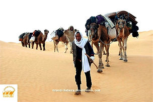 Méharée dans le désert à Douz